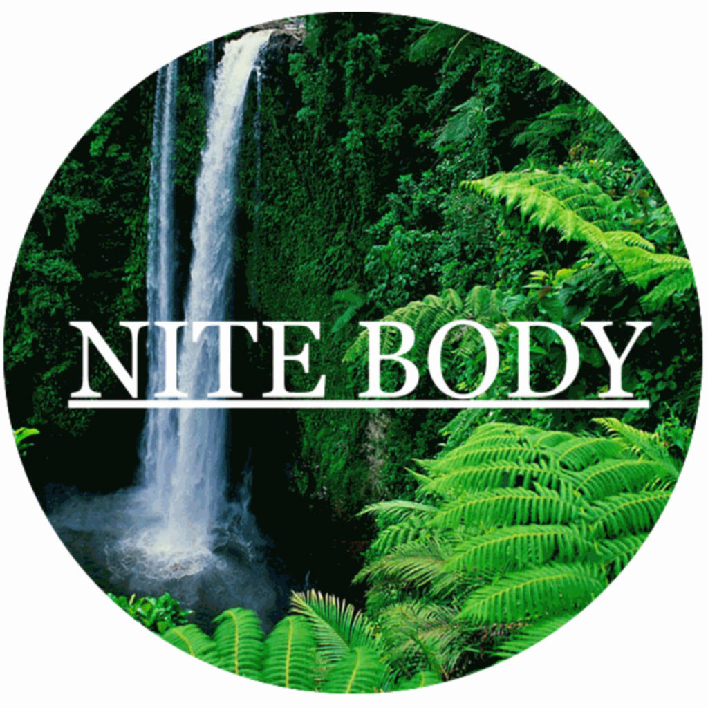 New Nite Body: Nite Sanctuary EP | Make Believe Melodies