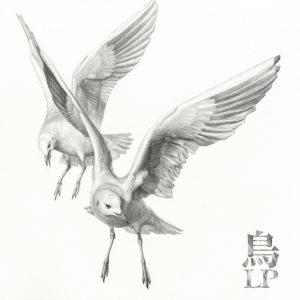 New Sauceman: Tori | Make Believe Melodies